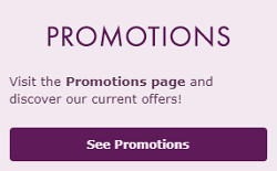 bingo games and promotions at bet365 bingo