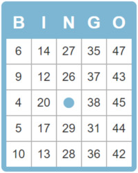 an impression of the design for the 50 ball bingo card