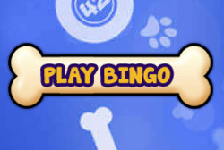 play bingo at lucky puppy bingo