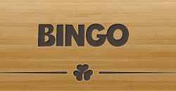 play the different bingo games at giant bingo